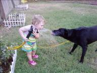 [UGCDFW-CJ-pets]Dog Days of Summer-Squishy and Bella