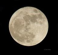 [UGCDFW-CJ-weather]Super Moon Dallas Nov 14