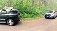 Large Stuffed Tiger Atop SUV Generates 911 Call