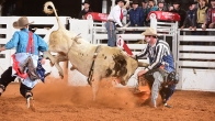 Fort Worth Stock Show and Rodeo 2019