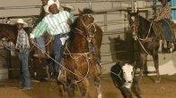 29th Texas Black...