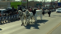 Dallas Dr. Martin Luther King Jr., Parade and Celebration 2016