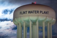 Flint Dogs Getting Lead Poisoning, Too