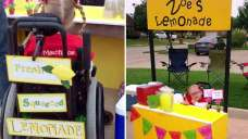 Lemonade Stand Funds Girl's Horse Therapy Tuition