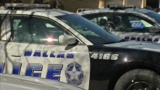 Woman, 76, Mauled by Dogs, in Critical Condition