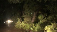 Those Impacted by Storms Should Stay Indoors Overnight; DPD