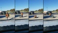 Woman Finds Green Solution to Decatur Pothole Problem