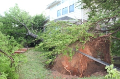 March 29 Storm Damage Through Your Eyes - Gallery II