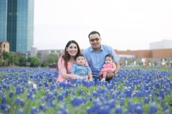 Bluebonnets in Bloom 2018 - Gallery III