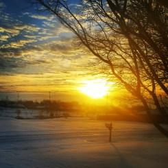 Your Snow Photos: March 5