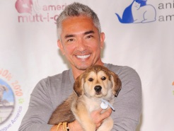 Cesar Millan Reveals Suicide Attempt
