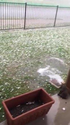 Hail video