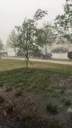 Hail in the Colony