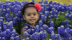 Bluebonnets in Bloom 2013 - Gallery II