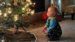 Holiday Photos - December 22, 2015