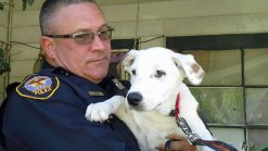 Officers To Be Recognized for Finding Stolen Dog