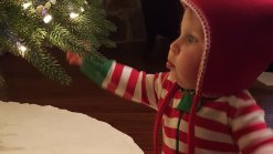 Holiday Photos & Video - December 1, 2015
