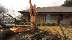 Lightning Strikes Tree, Shatters Windows in Dallas