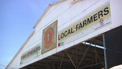 Dallas Looking for Farmer's Market Operator