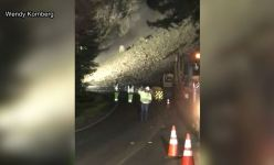 'Run!' Landslide Caught on Video in Northern California
