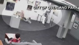 Kid Knocks Over Expensive Glass Sculpture