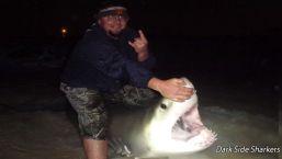 Fishermen Catch Great White in Panama City