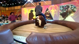 Harry Rides a Mechanical Bull