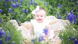 Bluebonnets in Bloom - Gallery IV