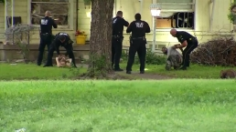 Raw: Man, Woman Surrender to Dallas Police