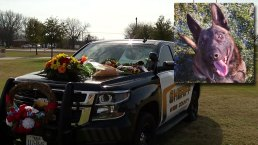 Memorial Planned for Wise County K-9