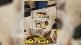 Cocaine Found in Box of Bananas