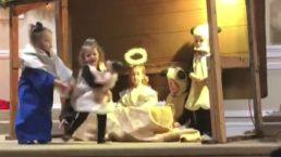 Toddler Playing Role of 'Sheep' Steals Baby Jesus