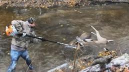 Tangled Bucks Freed in Dire Situation During Deer Season