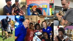 Pets Adopted During #ClearTheShelters 2018
