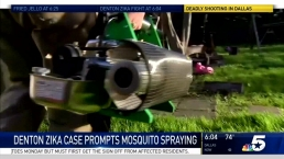 Denton To Spray for Zika Carrying Mosquitoes