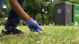 Irving Students Clean Litter Near Trinity River