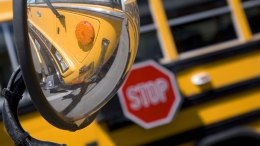 Child Run Over by School Bus