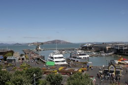 San Francisco Bay Closed to Commercial Fishing