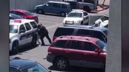 Phoenix Chief Says Police Response to Incident With 4-Year-Old Is 'Unacceptable'
