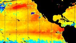Nearing El Niño Could Salve CA's Burning Drought