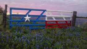 Worth the Drive: Ennis Bluebonnet Trails Festival