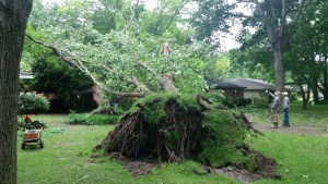 Your Storm Photos - May 25, 2015