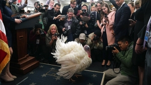 1 in 3 Americans Dreads Political Talk at Thanksgiving: Poll