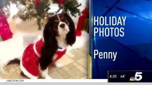 Holiday Photos - December 21, 2016