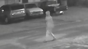 Person of Interest Sought in Tampa Killings