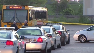 DART Bus Fatally Strikes Bus Driver: Officials