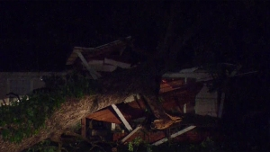 Tree Crashes Onto Dallas Home