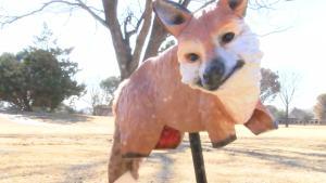 Fake Foxes Keeping Geese Away