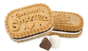 Girl Scouts Celebrate 100 Years With New S'mores Cookies
