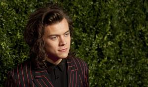 Harry Styles is Officially Going Solo